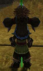 Vekk Armor Deldrimor Back