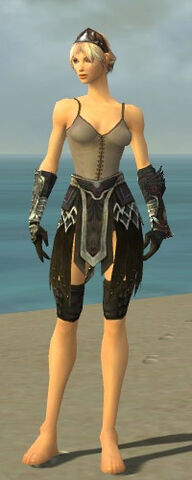File:Warrior Silver Eagle Armor F gray arms legs front.jpg