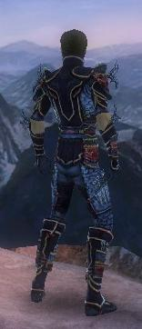 Assassin Monument Armor M dyed back