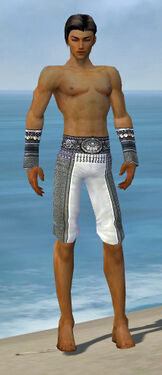 Elementalist Luxon Armor M gray arms legs front