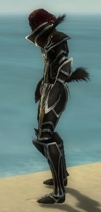 File:Necromancer Elite Sunspear Armor M Dyed Profile Left.jpg