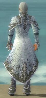 Elementalist Elite Iceforged Armor M gray back
