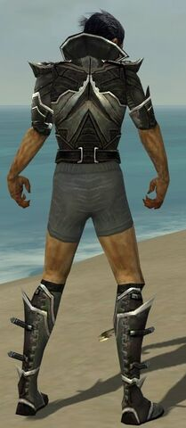 File:Necromancer Elite Kurzick Armor M gray chest feet back.jpg