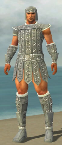 File:Warrior Ascalon Armor M gray front.jpg