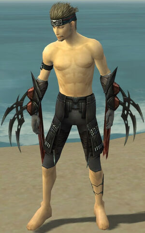 File:Assassin Ancient Armor M gray arms legs front.jpg