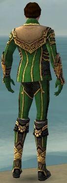 Mesmer Asuran Armor M dyed back
