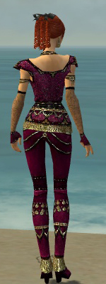 File:Mesmer Elite Luxon Armor F dyed back.jpg