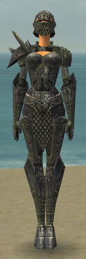 Warrior Elite Platemail Armor F gray front