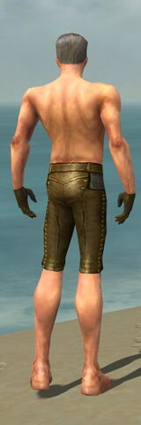File:Mesmer Monument Armor M gray arms legs back.jpg