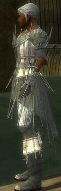 Elementalist Primeval Armor M gray side
