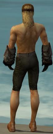 File:Ranger Norn Armor M gray arms legs back.jpg