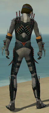 Assassin Elite Canthan Armor M gray back