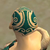File:Monk Norn Armor F dyed head back.jpg