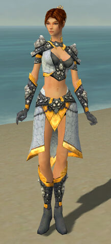 File:Elementalist Stoneforged Armor F dyed front.jpg