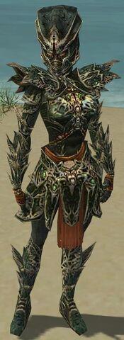 File:Warrior Elite Luxon Armor F gray front.jpg