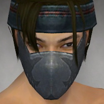 File:Assassin Seitung Armor M gray head front.jpg