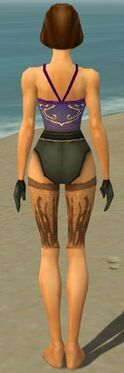 Mesmer Primeval Armor F gray arms legs back