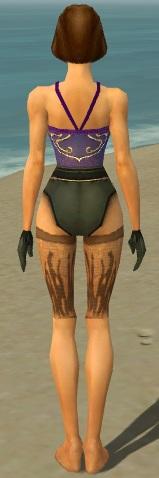 File:Mesmer Primeval Armor F gray arms legs back.jpg