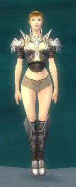 Heavy Breastplate F gray front