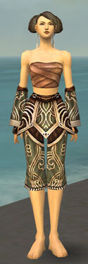 Monk Canthan Armor F gray arms legs front