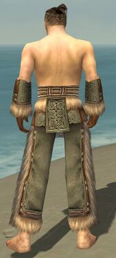 Monk Norn Armor M gray arms legs back