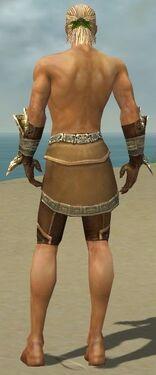 Ranger Asuran Armor M gray arms legs back