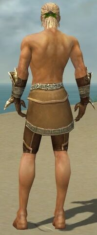 File:Ranger Asuran Armor M gray arms legs back.jpg