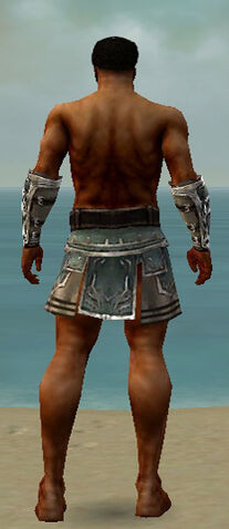 File:Warrior Istani Armor M gray arms legs back.jpg