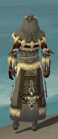 File:Dervish Norn Armor M gray back.jpg