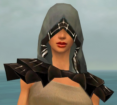 File:Dervish Primeval Armor F gray head front.jpg