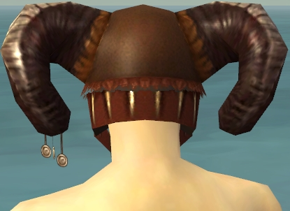 File:Ritualist Norn Armor M gray head back.jpg