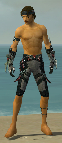 File:Assassin Elite Canthan Armor M gray arms legs front.jpg