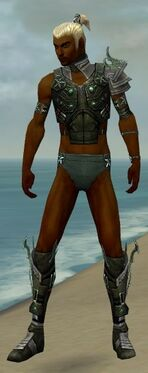 Assassin Elite Luxon Armor M gray chest feet front