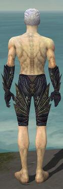 Necromancer Krytan Armor M gray arms legs back