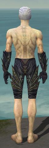 File:Necromancer Krytan Armor M gray arms legs back.jpg