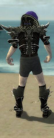 File:Necromancer Elite Luxon Armor M gray chest feet back.jpg