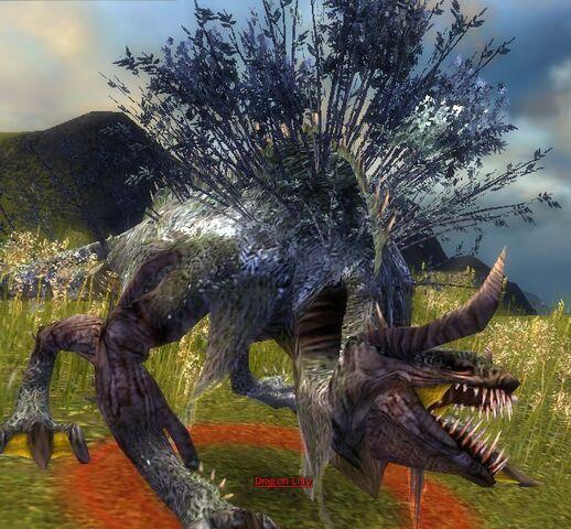 File:Dragon lilly.jpg