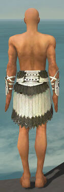 Paragon Sunspear Armor M gray arms legs back
