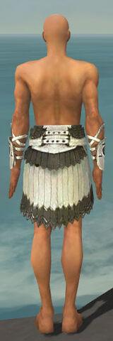 File:Paragon Sunspear Armor M gray arms legs back.jpg