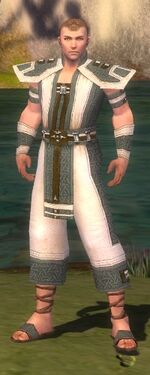 Monk Elite Saintly Armor M gray front