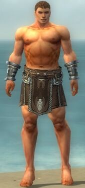 Warrior Gladiator Armor M gray arms legs front
