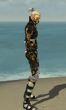 Assassin Elite Kurzick Armor M dyed side