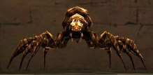 File:Black Widow Spider HoM.jpg
