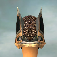 File:Warrior Elite Kurzick Armor F dyed head back.jpg