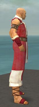 Monk Krytan Armor M dyed side