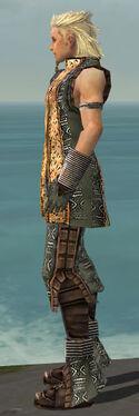 Elementalist Istani Armor M gray side
