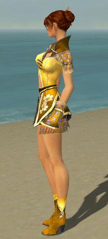 File:Elementalist Shing Jea Armor F dyed side.jpg