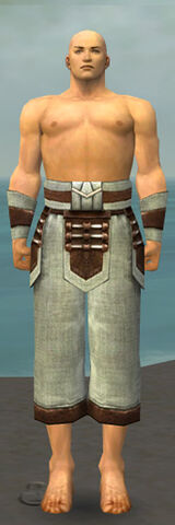 File:Monk Censor Armor M gray arms legs front.jpg