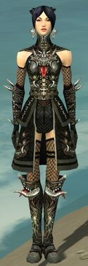 Necromancer Canthan Armor F gray front