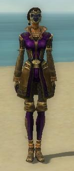 File:Mesmer Ancient Armor F dyed front.jpg